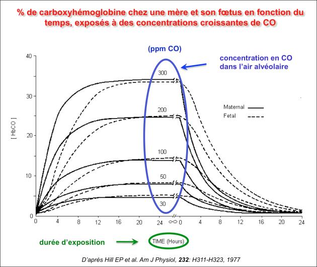 Toxicologie du monoxyde de carbone devenir du co dans l - Oxyde de carbone ...