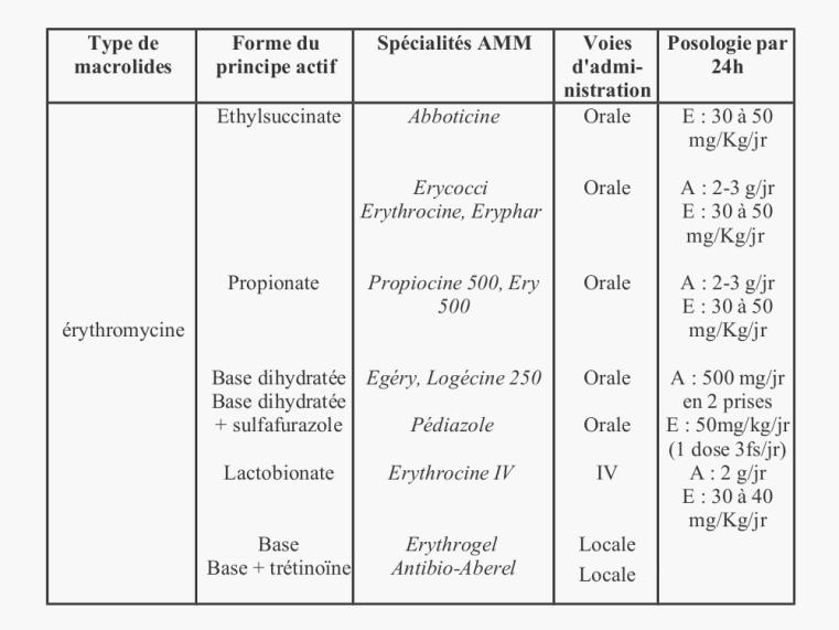 Macrolides et apparentés - A) Erythromycine (Erythromycine A)